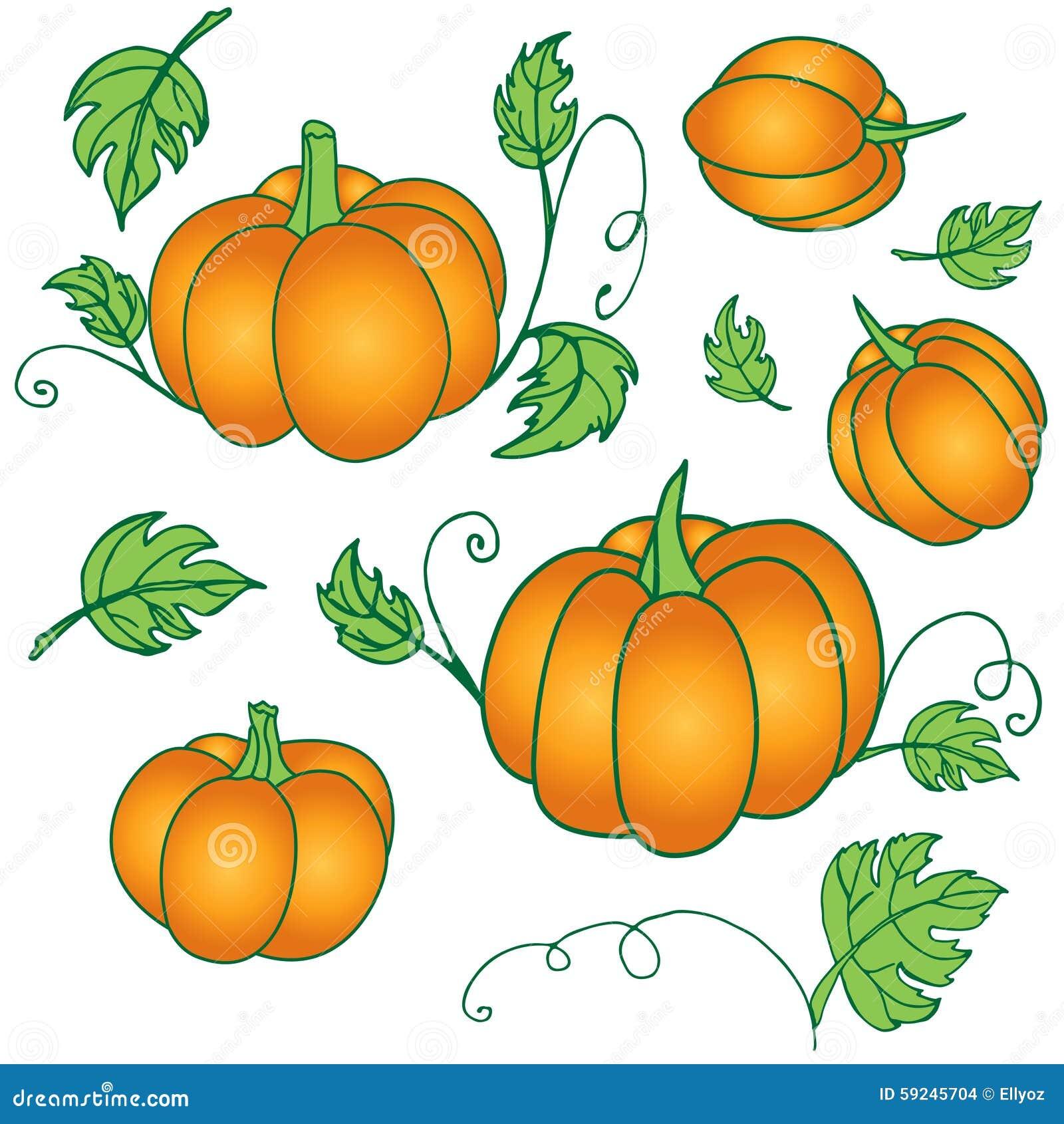 Download Calabaza dibujada mano ilustración del vector. Ilustración de fresco - 59245704