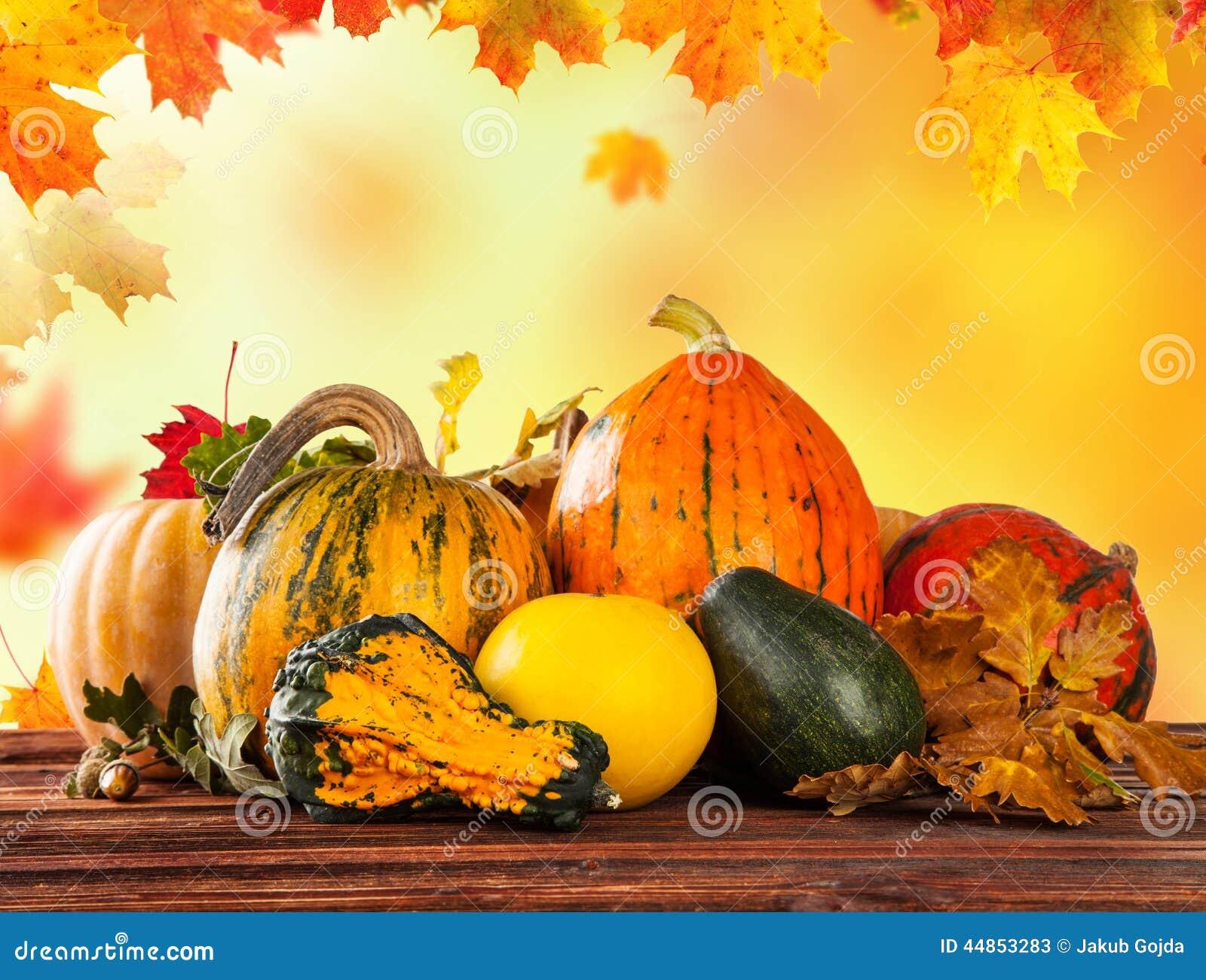 Calabazas coloreadas otoño en la tabla de madera
