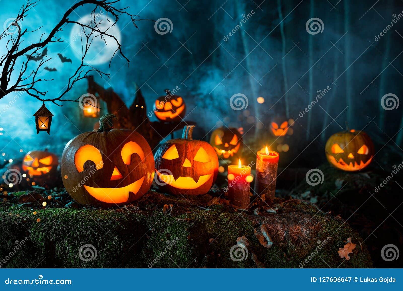 Calabazas de Halloween en bosque fantasmagórico oscuro