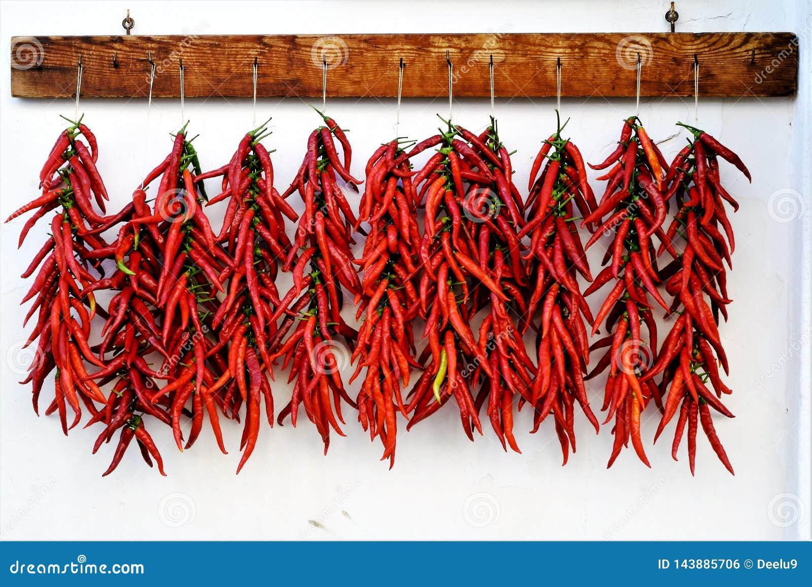 Calabrian varm chili som peppersdrying i solen
