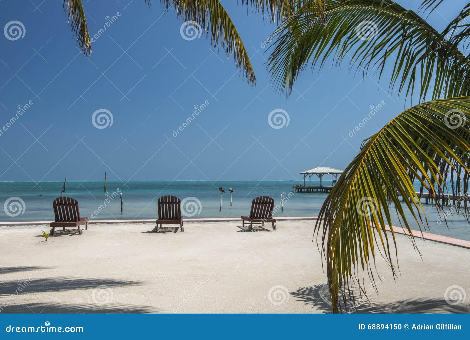 Calafate Belice de Caye de la palmera de Sunloungers
