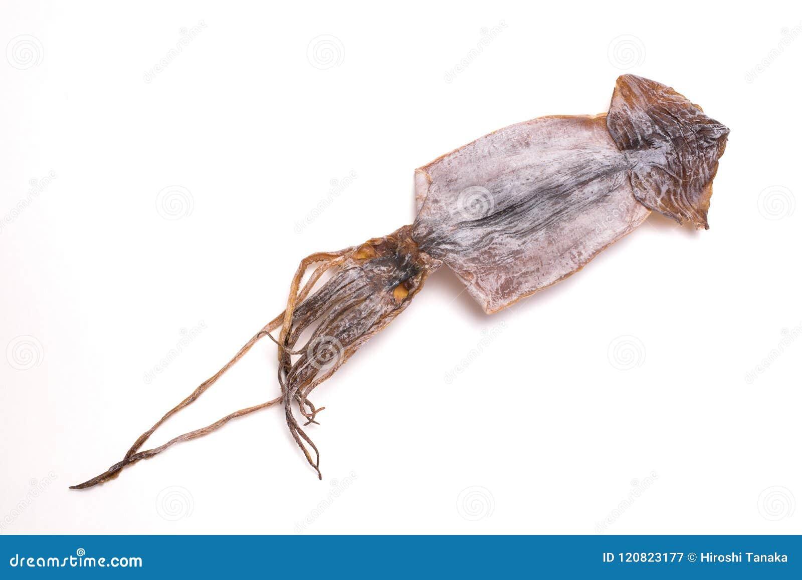 Calamar secado