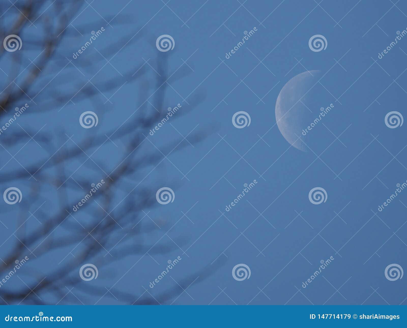Calare Crescent Moon
