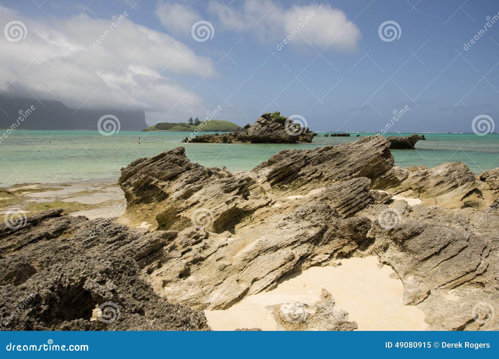 Calcarenite stratifié à la plage Lord Howe Island de lagune