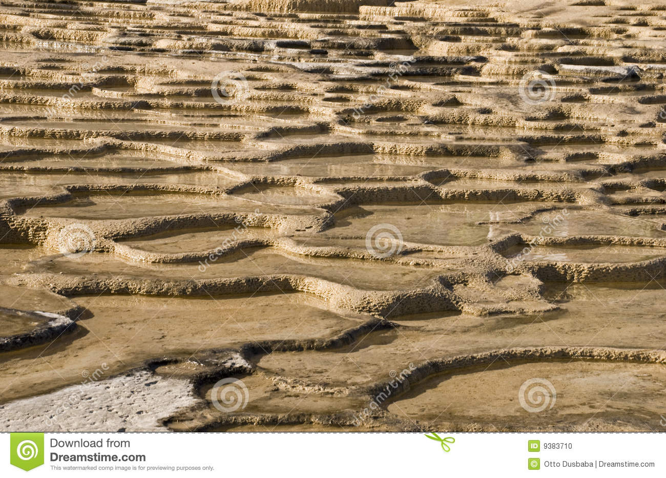 Calcified mineral water puddles