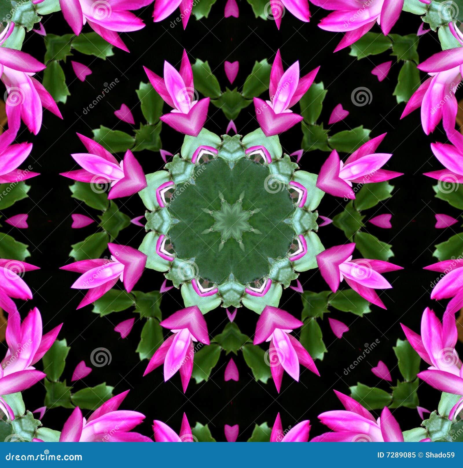 Caleidoscopio rosado de la flor