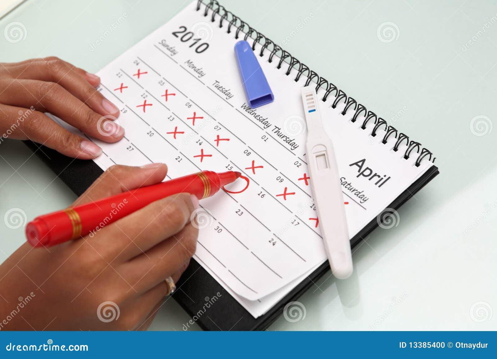 Calendário cricling da mão com teste de gravidez