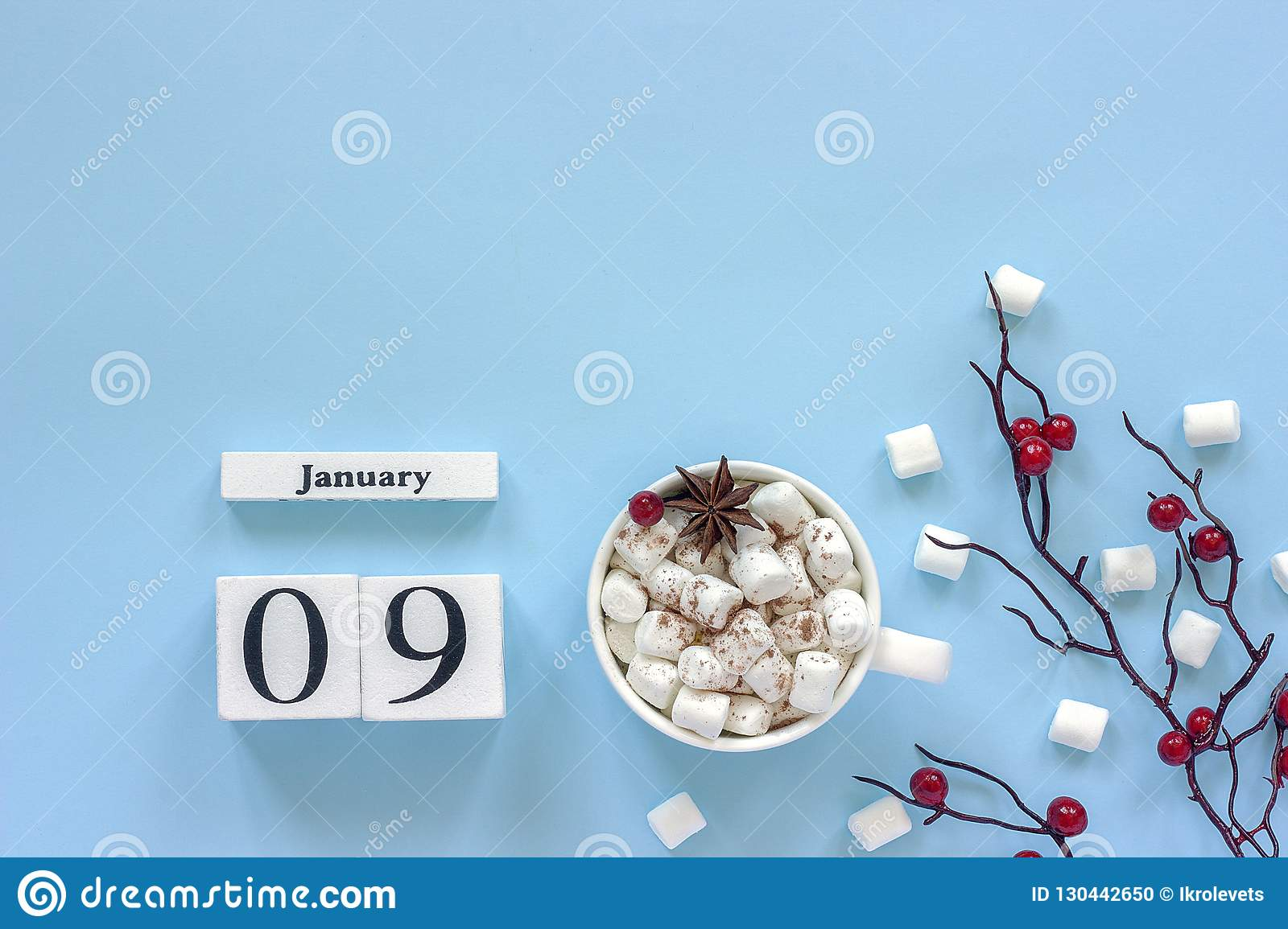Calendar January 9 Cup of cocoa, marshmallows and branch berries