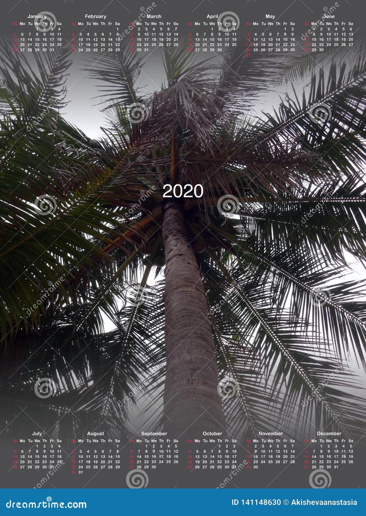 Calendario per 2020