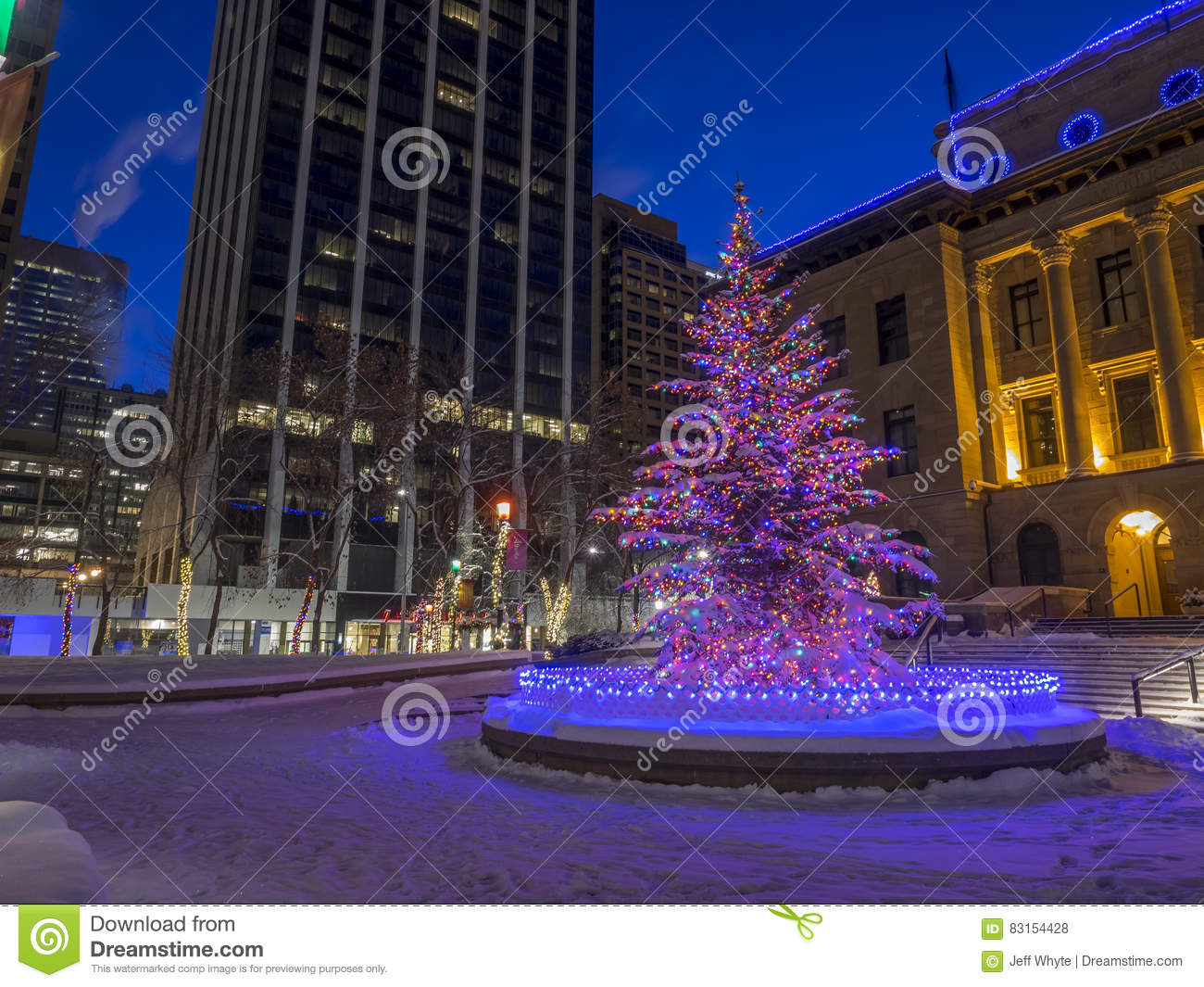 Christmas In Calgary Canada.Calgary At Christmas Editorial Stock Photo Image Of Black