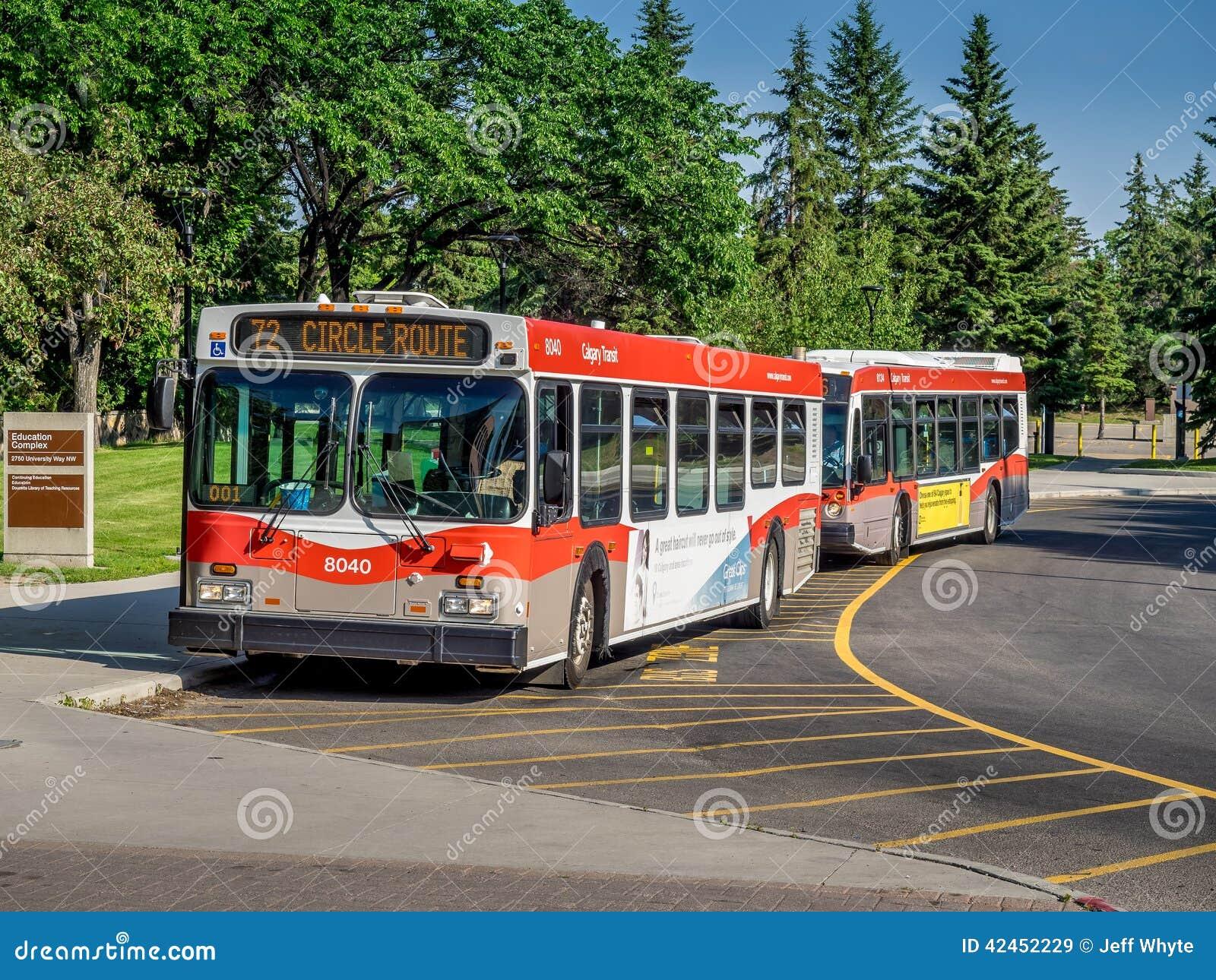Calgary-Durchfahrtbus