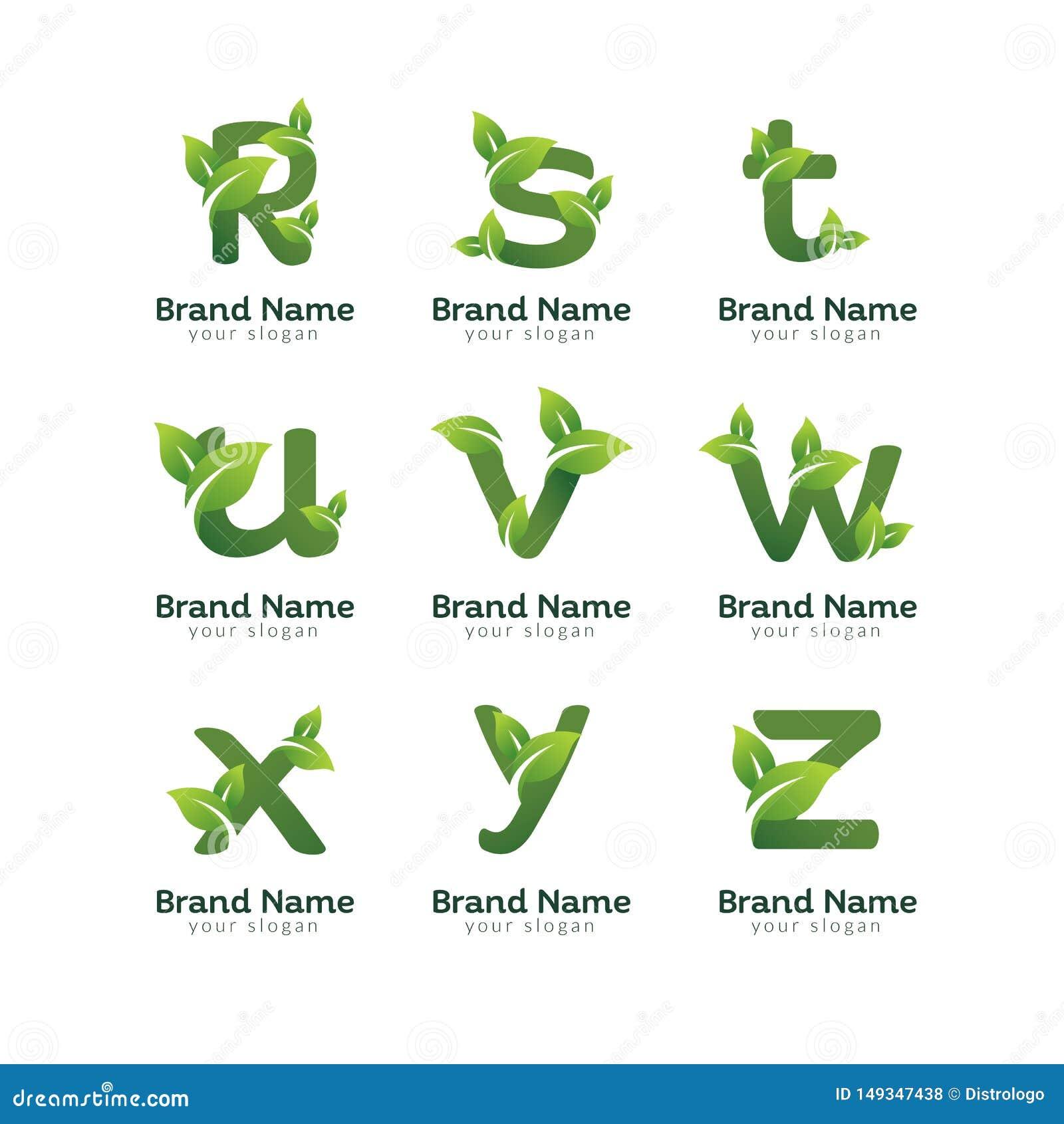 Calibre de conception de logo de paquet de lettre de vert d Eco Conceptions vertes de vecteur d alphabet avec l illustration vert