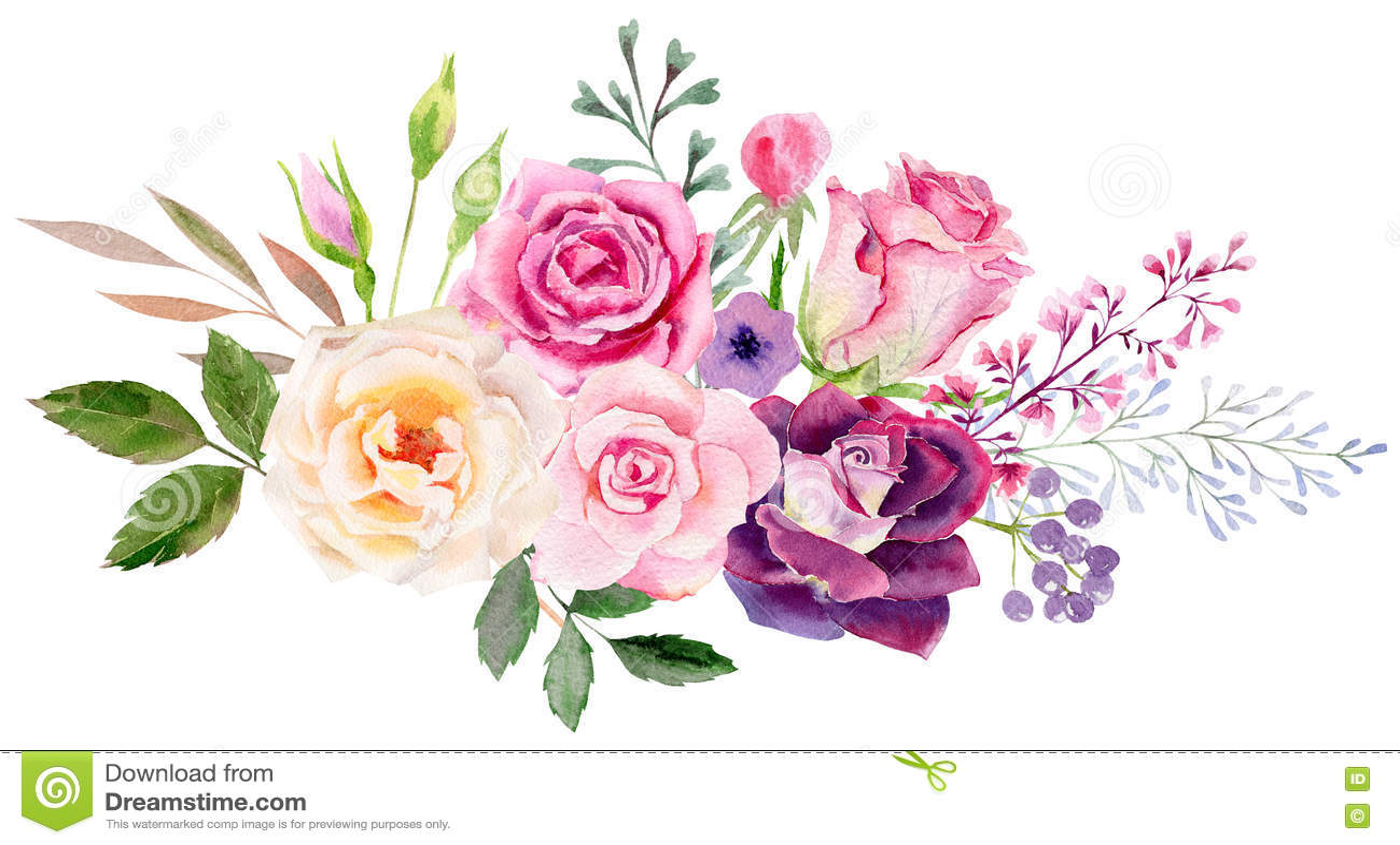 Calibre peint à la main de clipart de maquette d aquarelle des roses