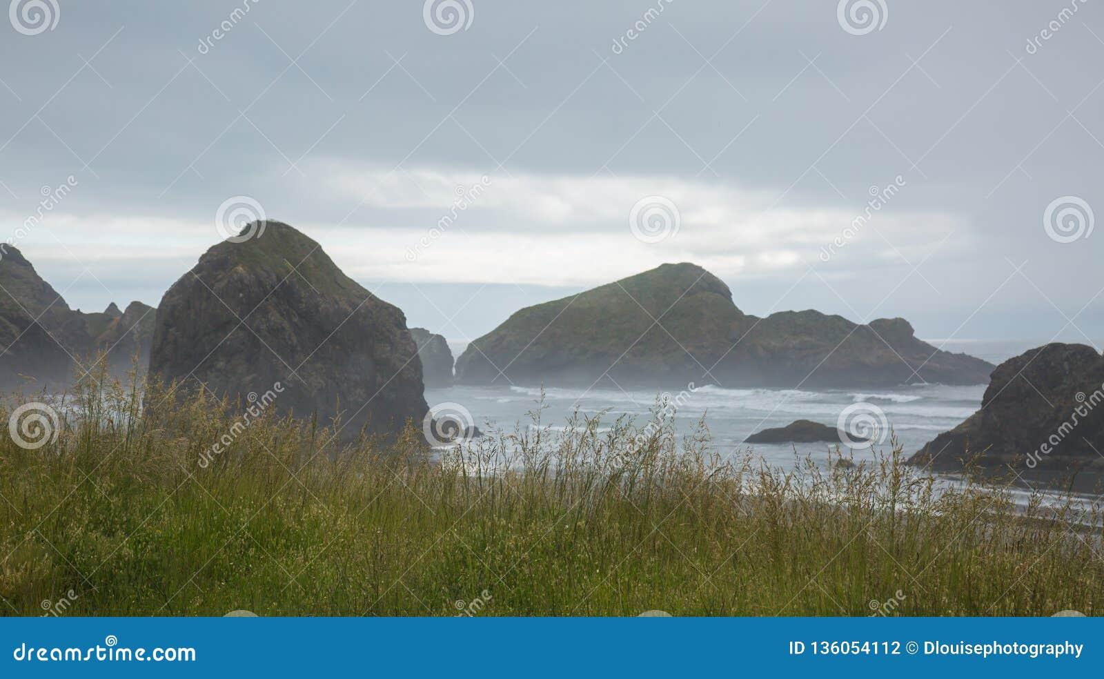 Californië Rocky Coastline door de hoge grassen