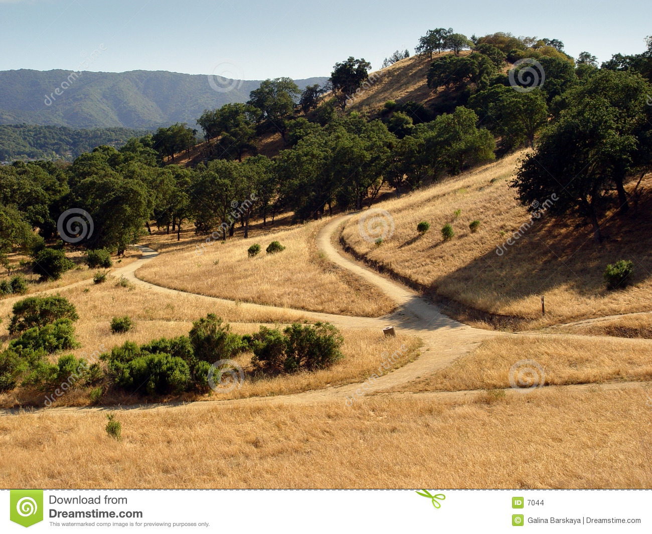 California Hills Stock Photo Image Of Camp Field Space 7044