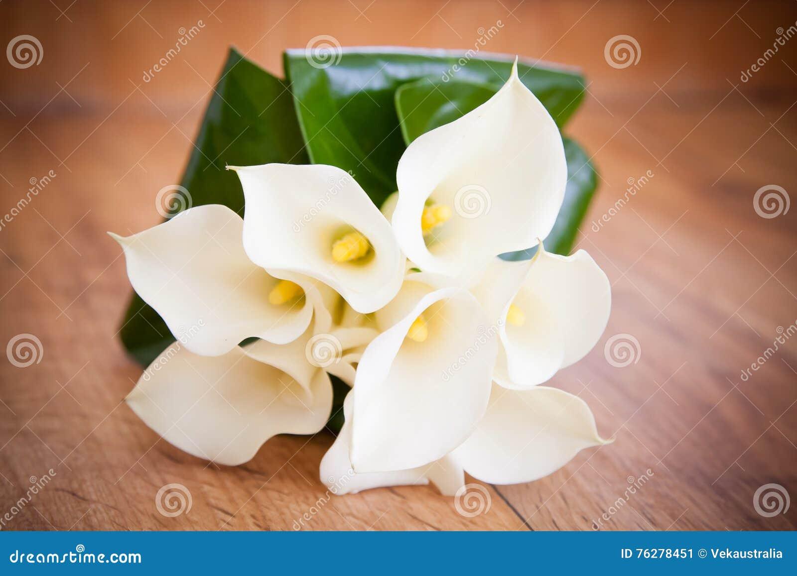 Calla Branco Lily Wedding Flower Bouquet Imagem De Stock Imagem De Grupo Branco 76278451
