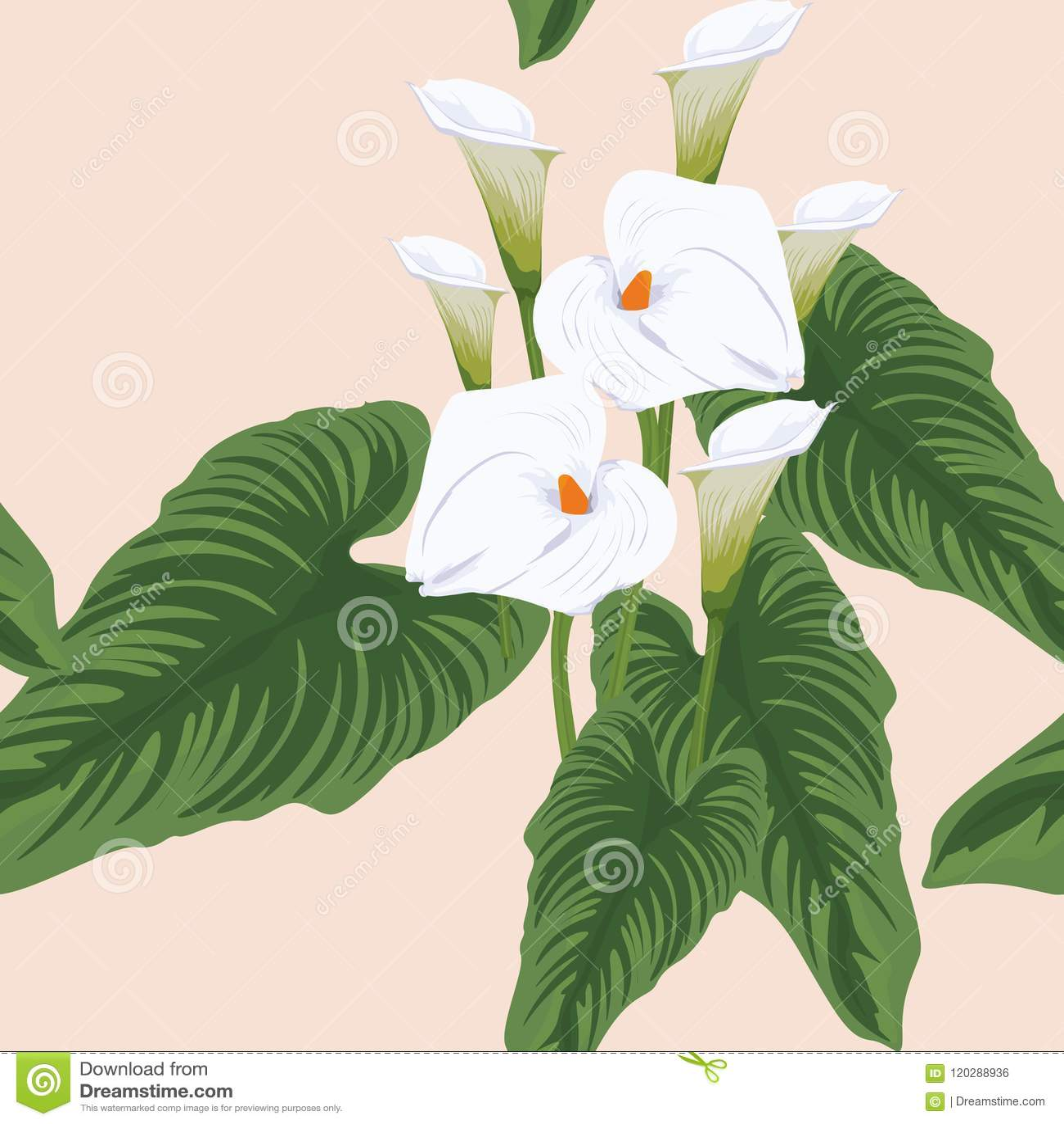 Seamless Calla Lilies Flower Background Elegant Fashion Colorful