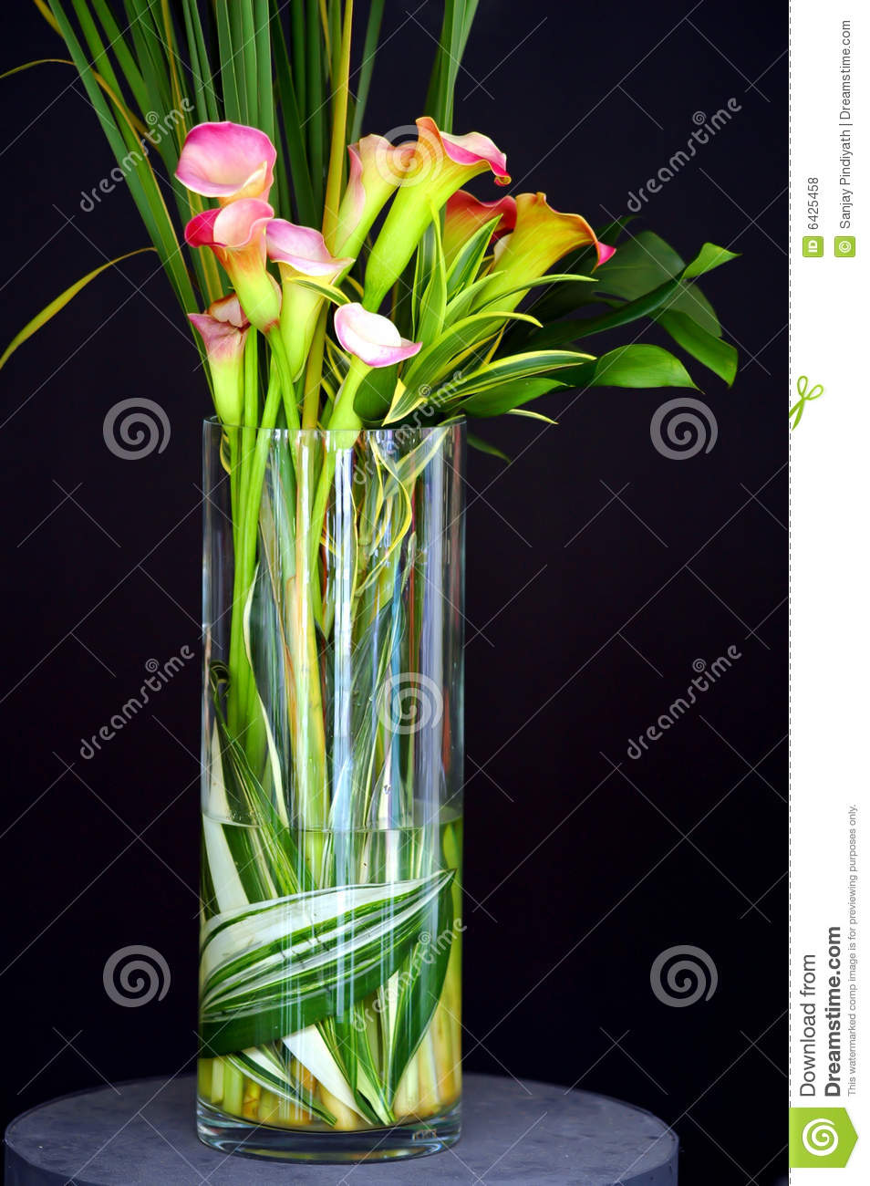 Calla lilies in vase stock photo image of tropical elegant 6425458 calla lilies in vase reviewsmspy