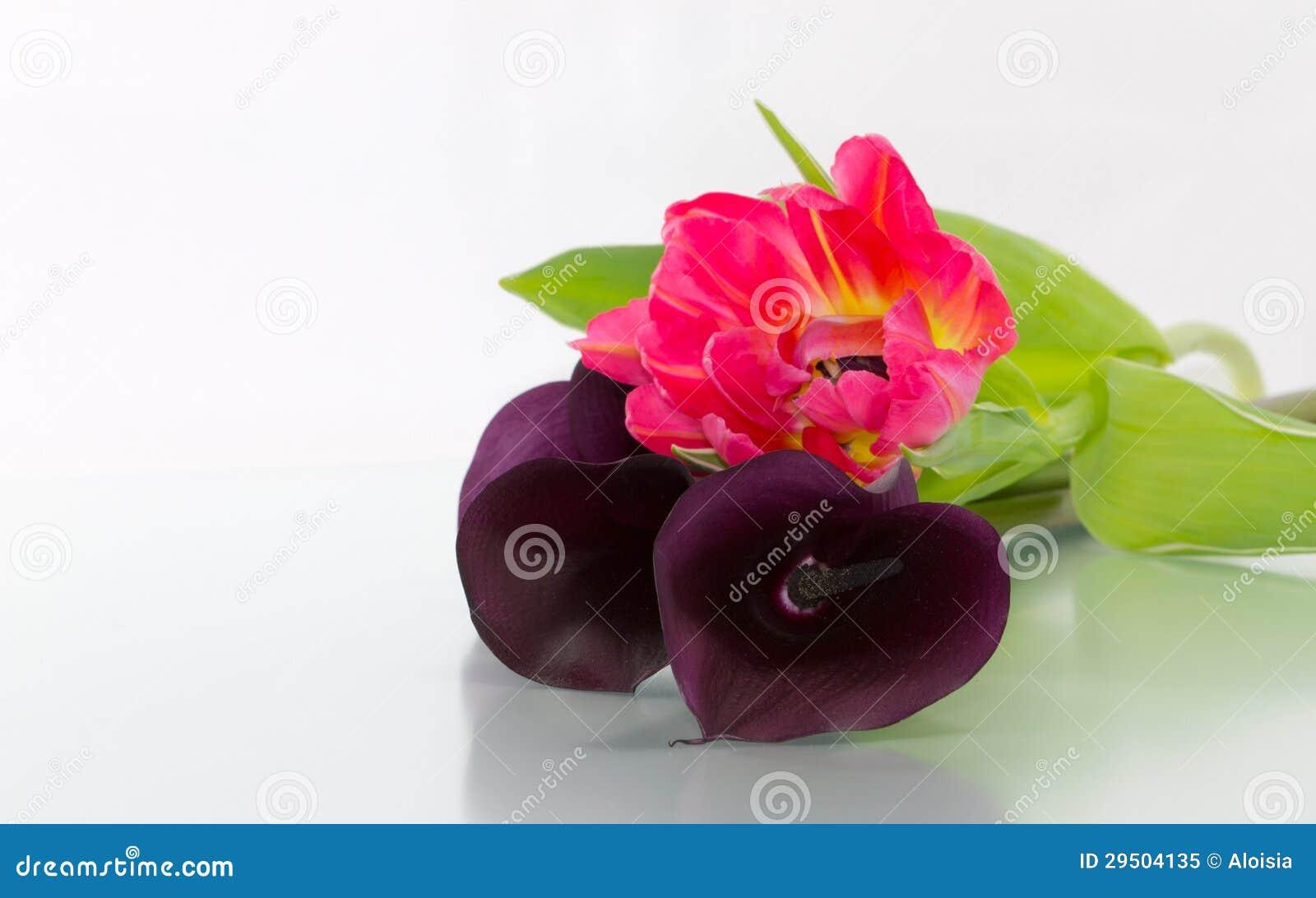Callas en tulpen