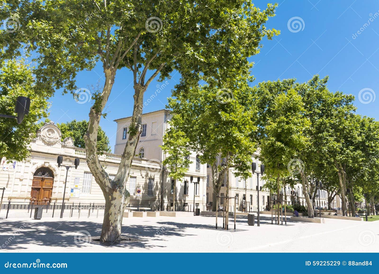 Download Calle Con Los árboles Verdes En Nimes, Francia Imagen de archivo - Imagen de landscaping, europeo: 59225229