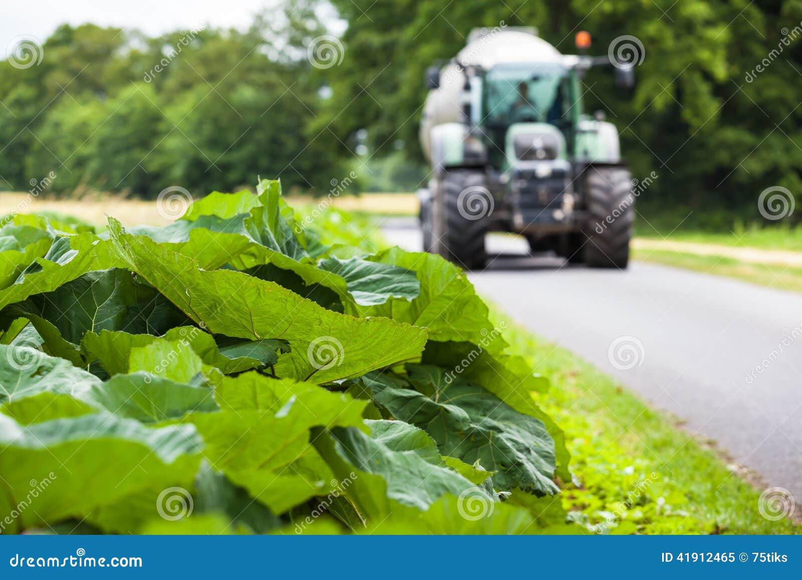 Calle rural con el tractor