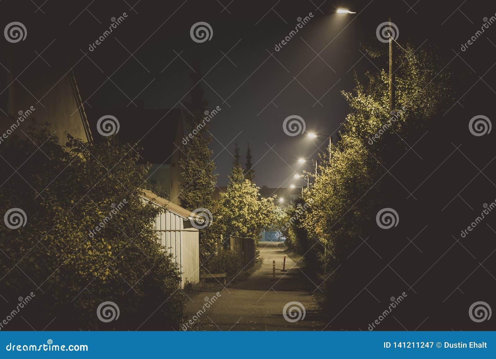 Callejón oscuro en la noche