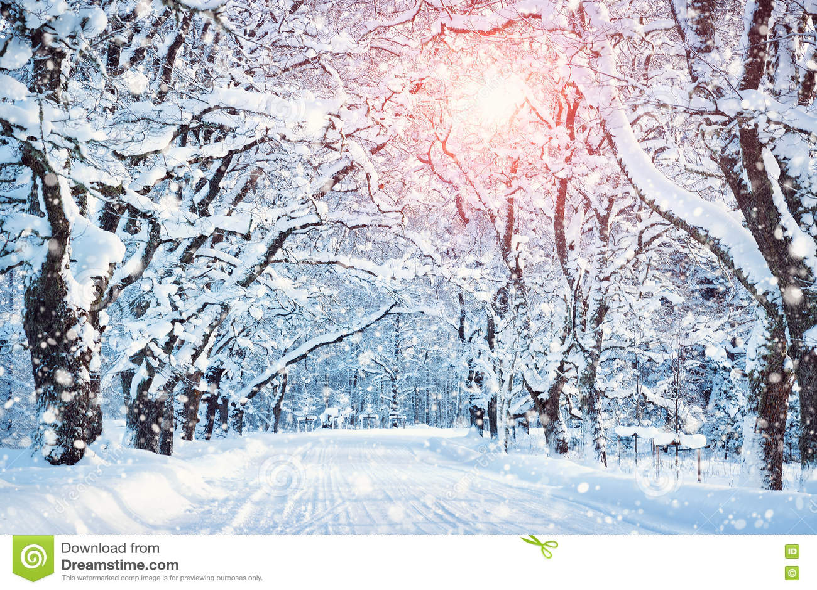 Callejón por mañana nevosa