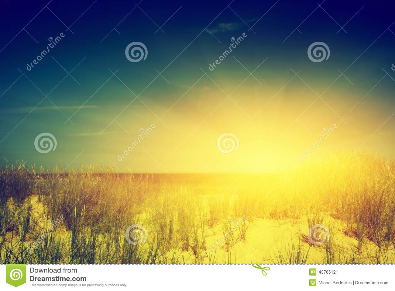 Download Calm Ocean And Sunny Beach With Dunes And Green Grass Stock Image - Image of holiday, autumn: 43766121