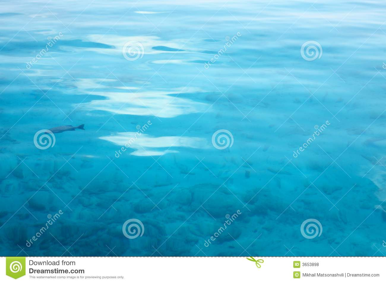 Calm Surface Of The Water Royalty Free Stock Photos - Image: 3653898