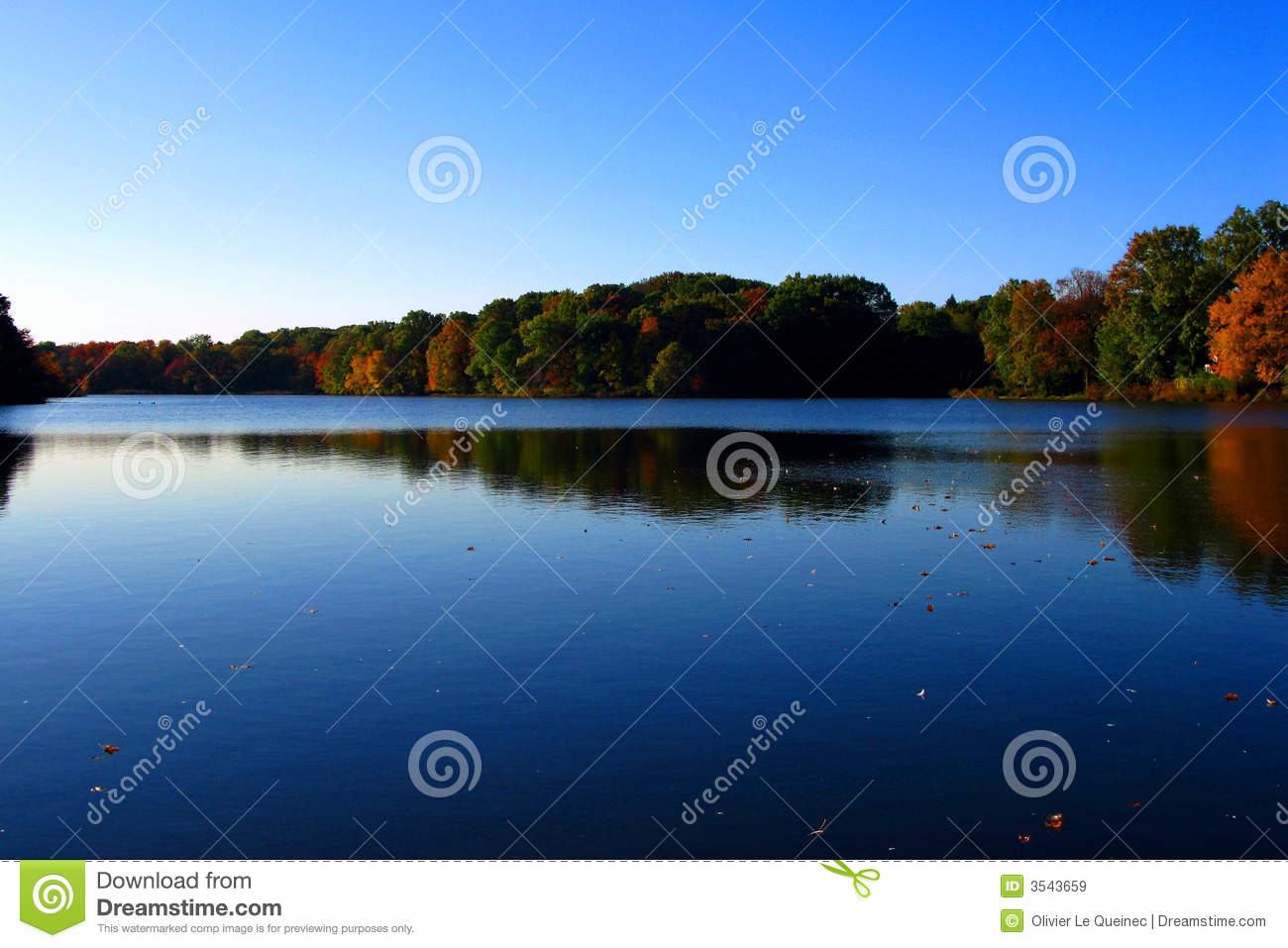 Calm Water Lake and Trees in Early Fall