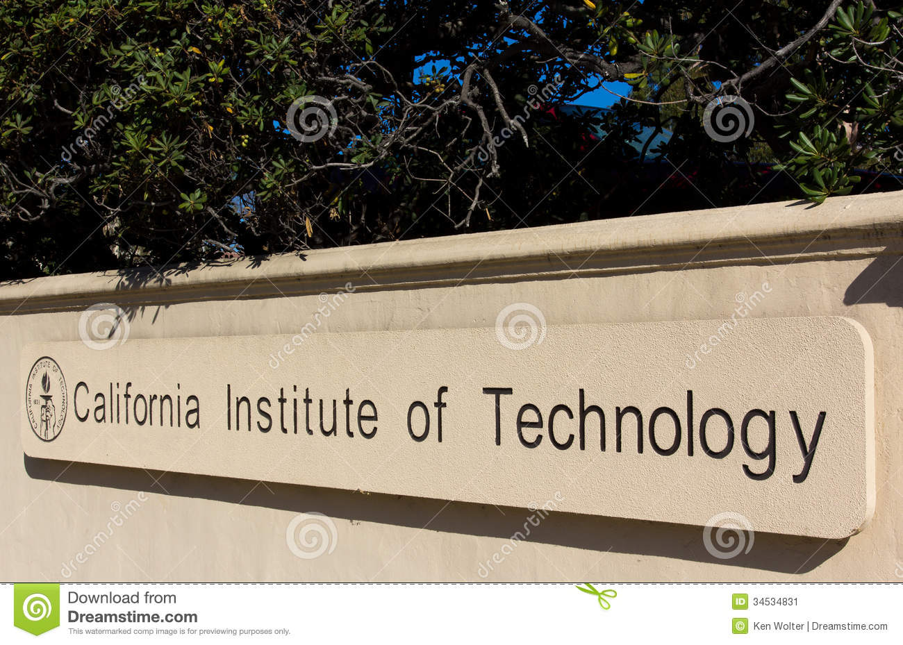 List of California Universities with PhD Programs - Study.com