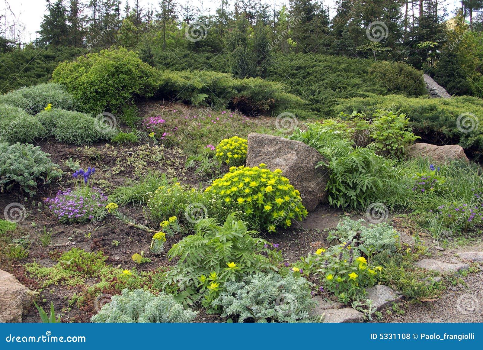 Calzada de piedra que pasa a través de las flores