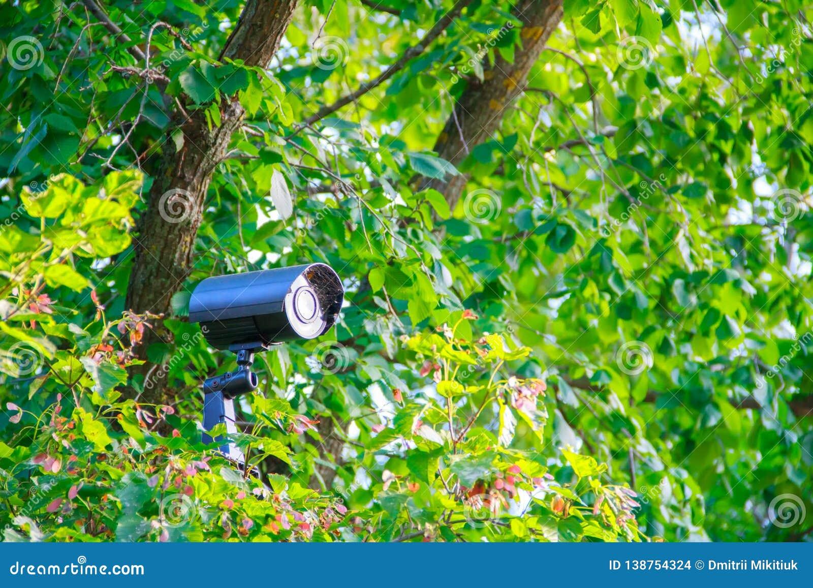 Caméra vidéo noire cachée de degré de sécurité de rue en métal avec la lumière arrière et toile d araignée sur la parenthèse dans