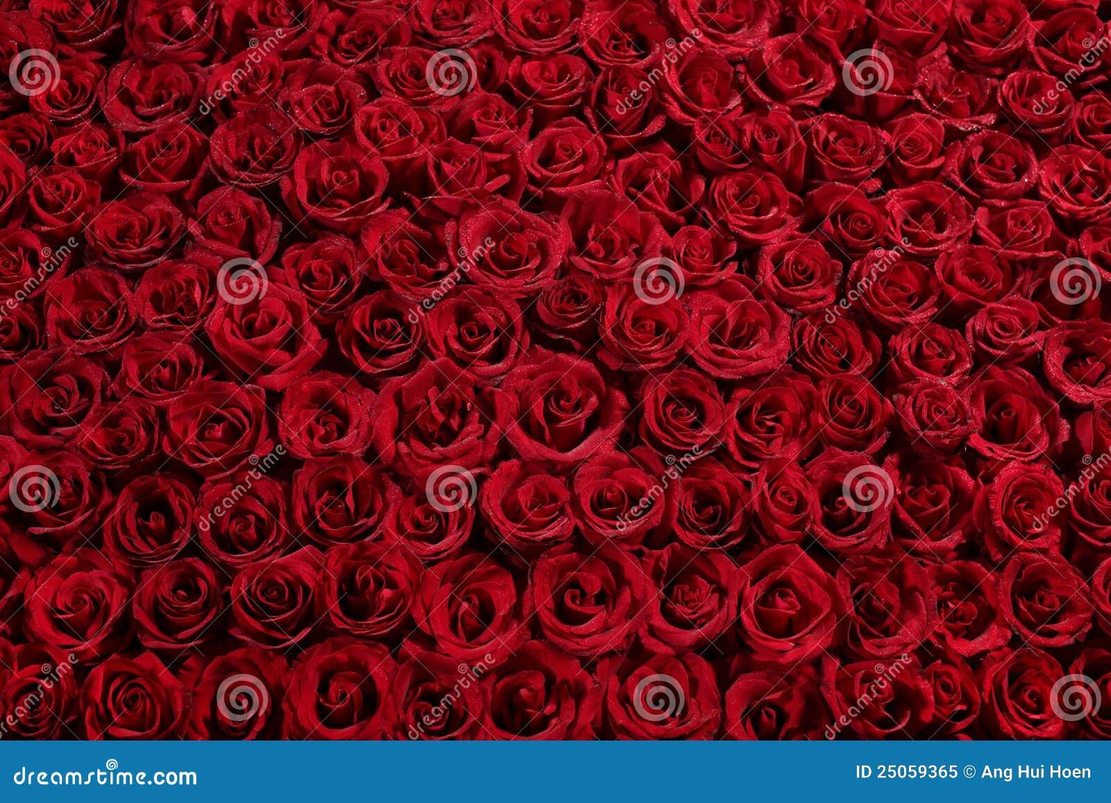 Cama de rosas