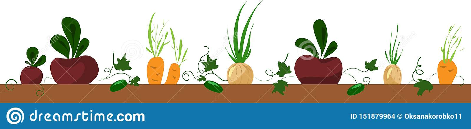Cama vegetal, marco con la remolacha, zanahoria, cebolla