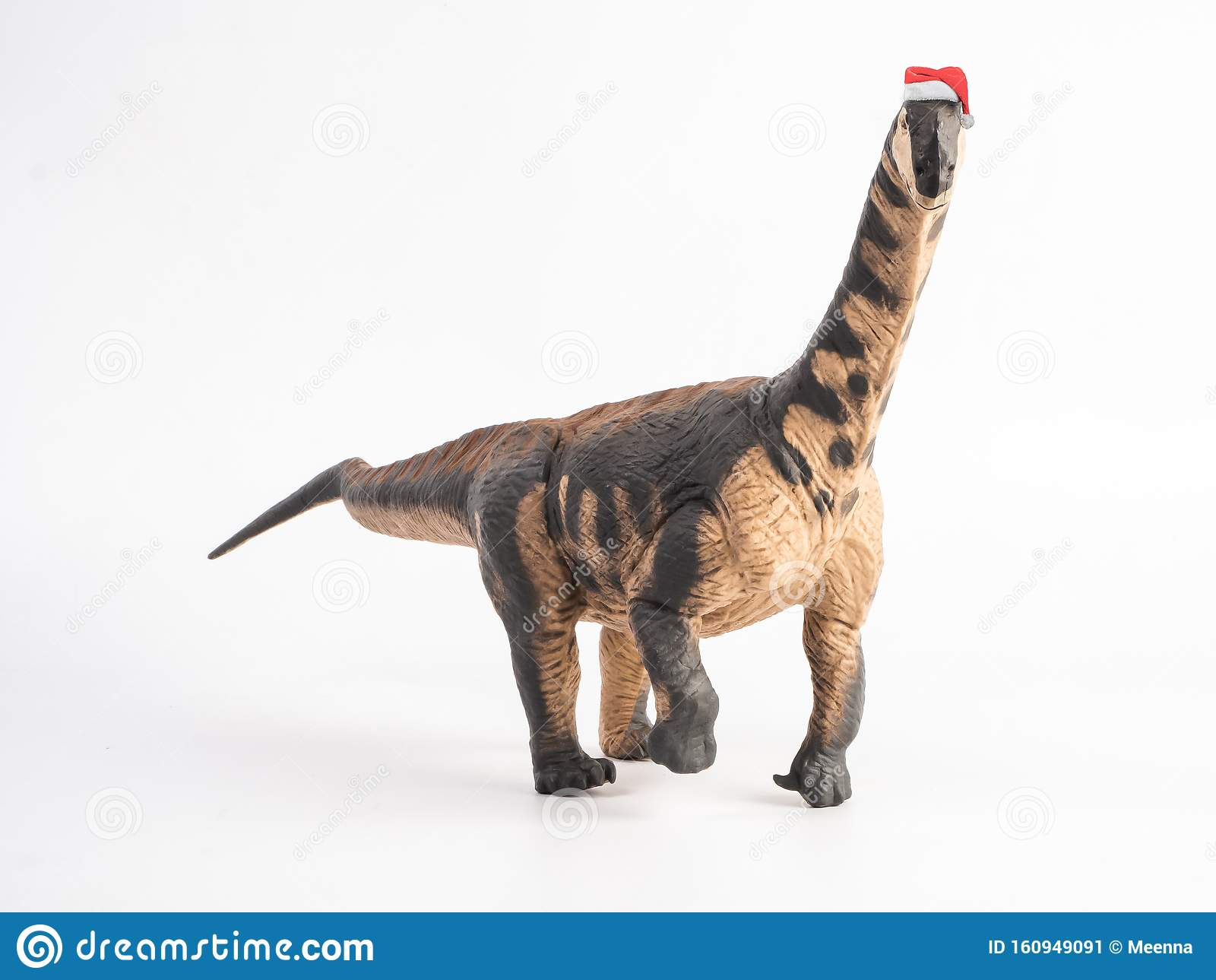 Camarasaurus Dinosaur With Christmas Hat On White ...