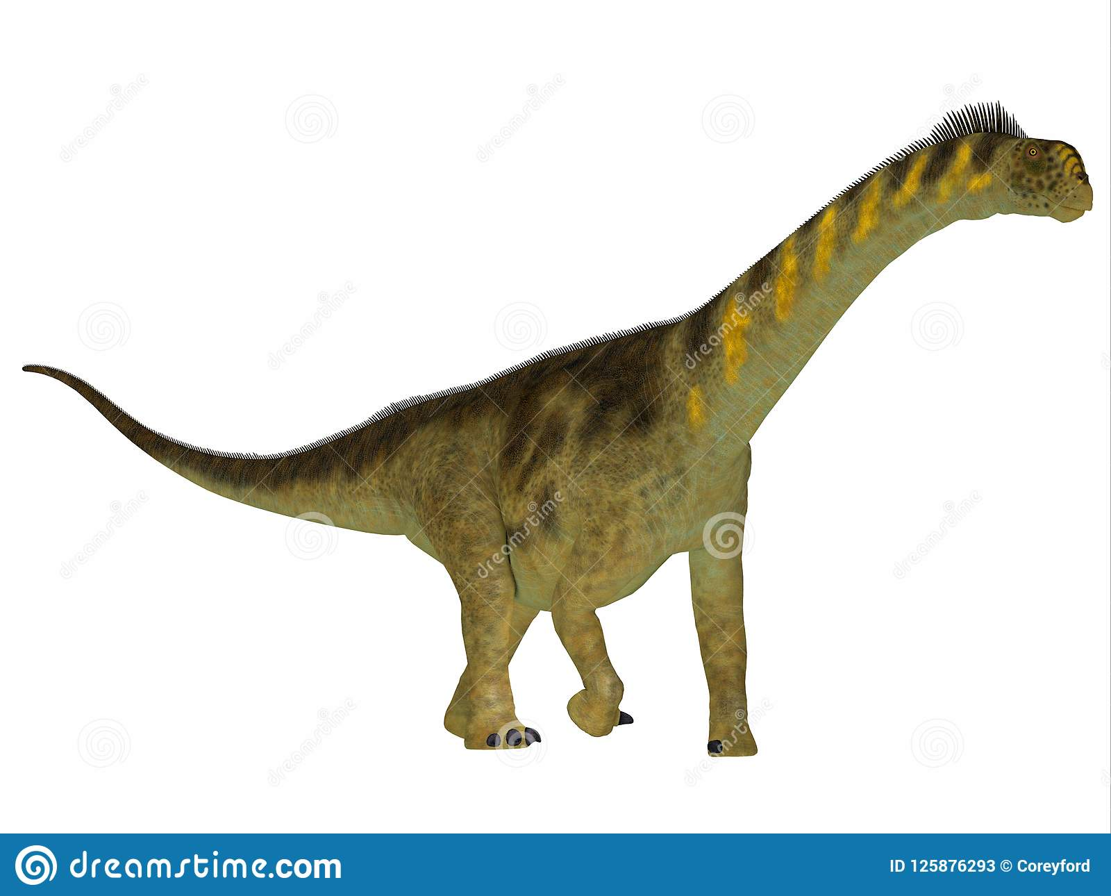 Camarasaurus Dinosaur Side Profile Stock Illustration - Illustration ... 0f969bebac46