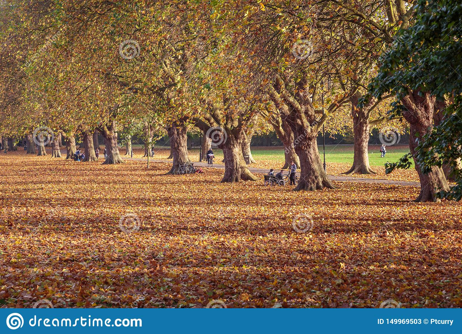 Cambridge Angleterre, Jesus Green, automne
