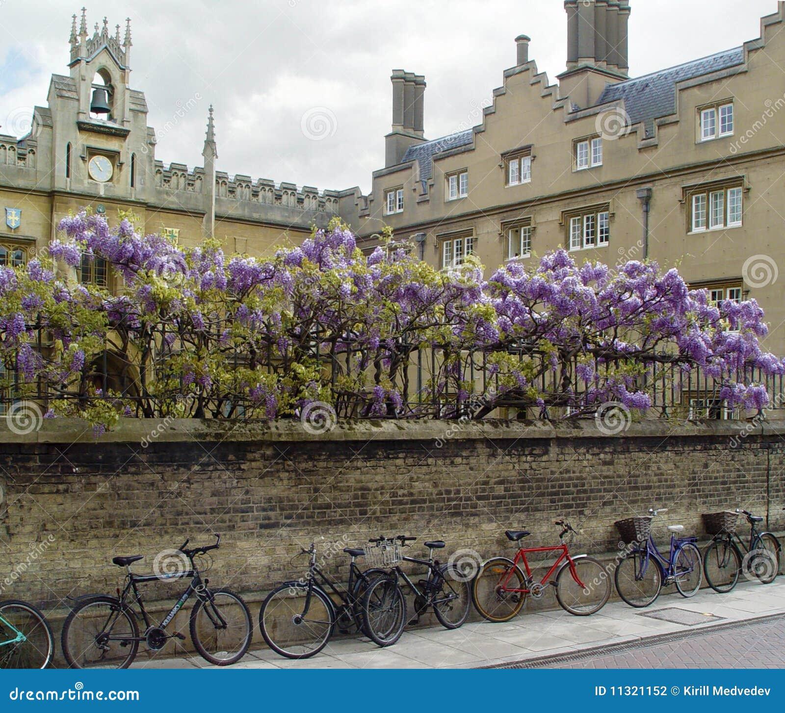 Cambridge-Fahrräder