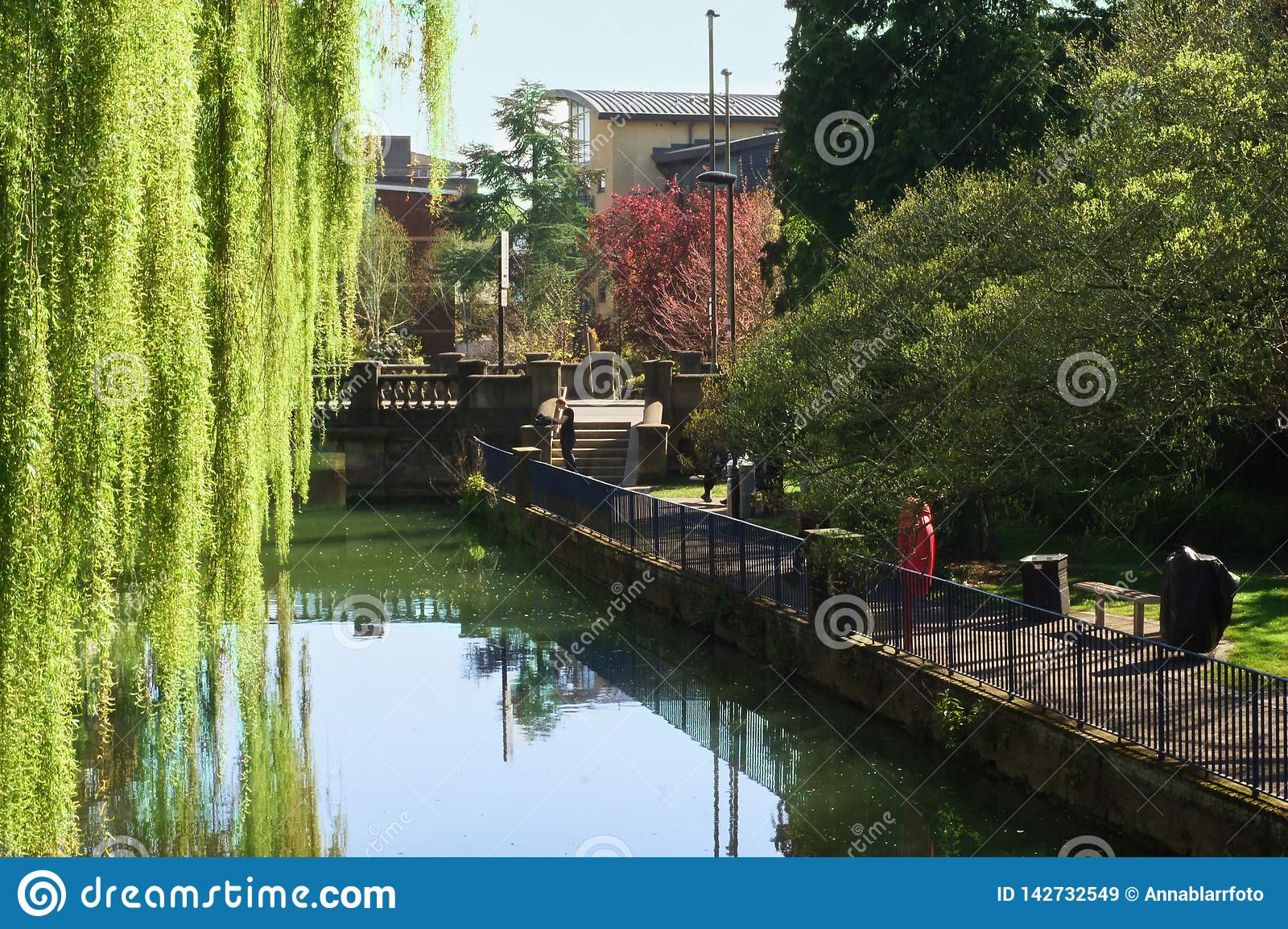 Cambridge, parc, rivière de came