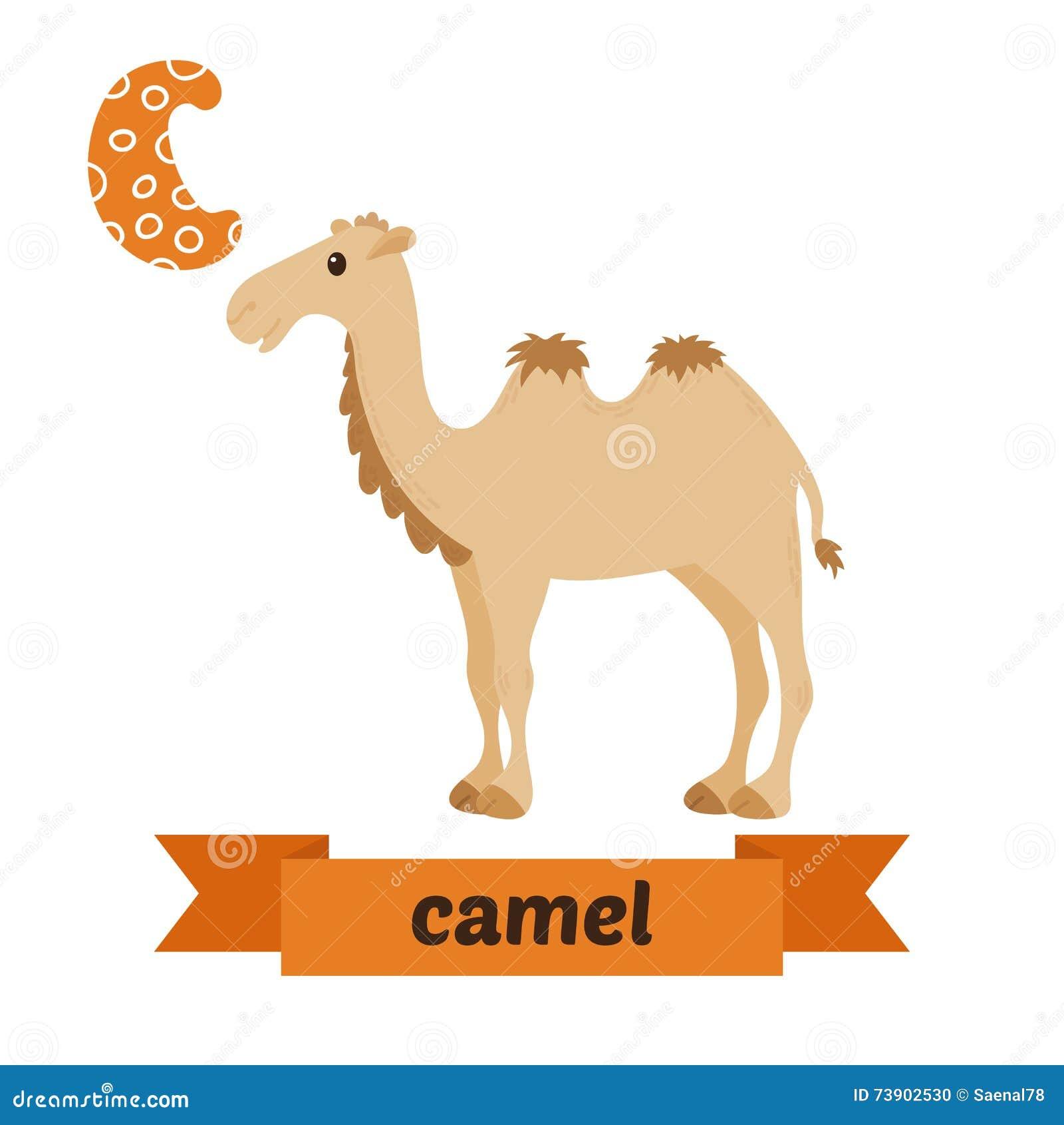 Stock Illustration Camel C Letter Cute Children Animal Alphabet Vector Funny Cartoon Animals Illustration Image73902530 on Desert Art For Preschool