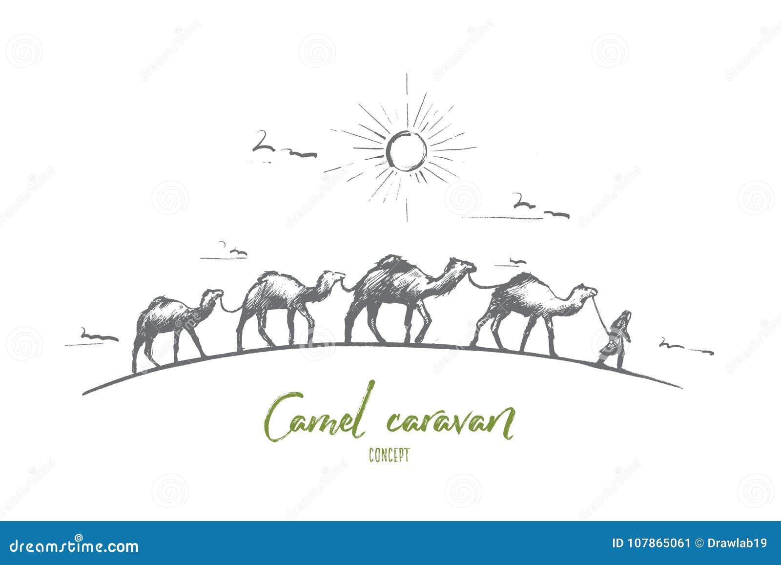 Camel caravan concept. Hand drawn isolated vector.