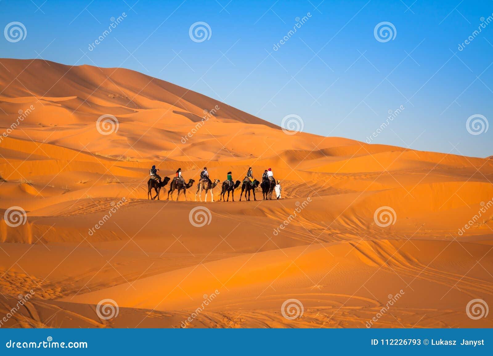 Download Camel Caravan Going Through The Sand Dunes In The Sahara Desert, Stock Image - Image of drift, africa: 112226793
