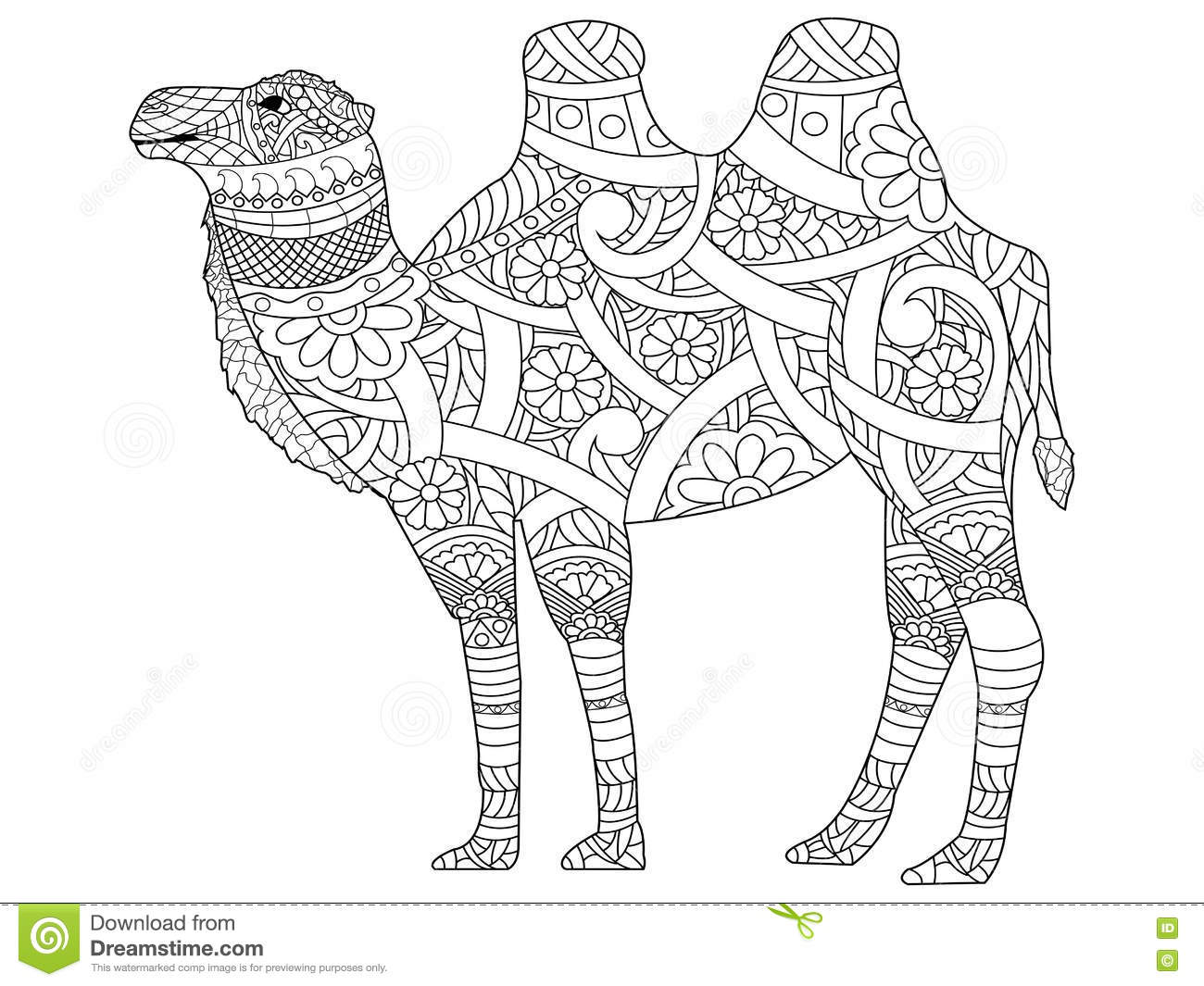 Camel Coloring Book Vector For Adults Stock Vector
