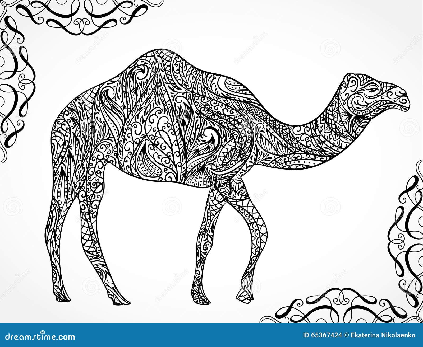 Camel Vector Vector Illustration