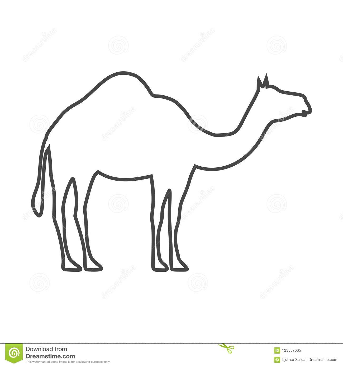 Silhouette Camel Line Drawing Wiring Diagrams