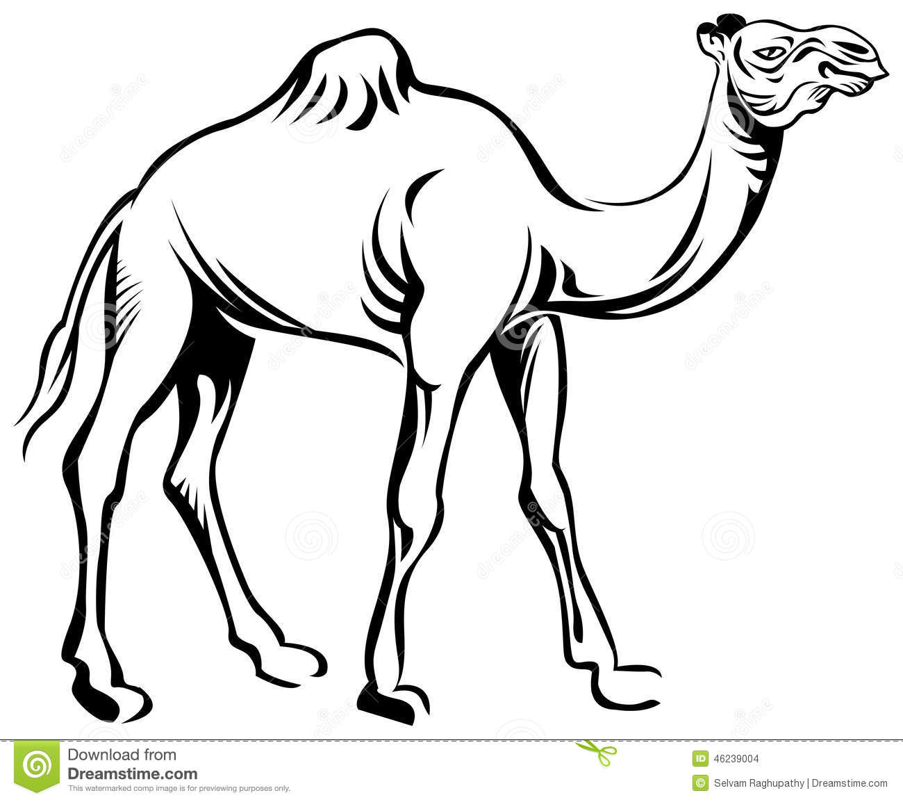Line Drawing Clip Art : Camel stock vector image
