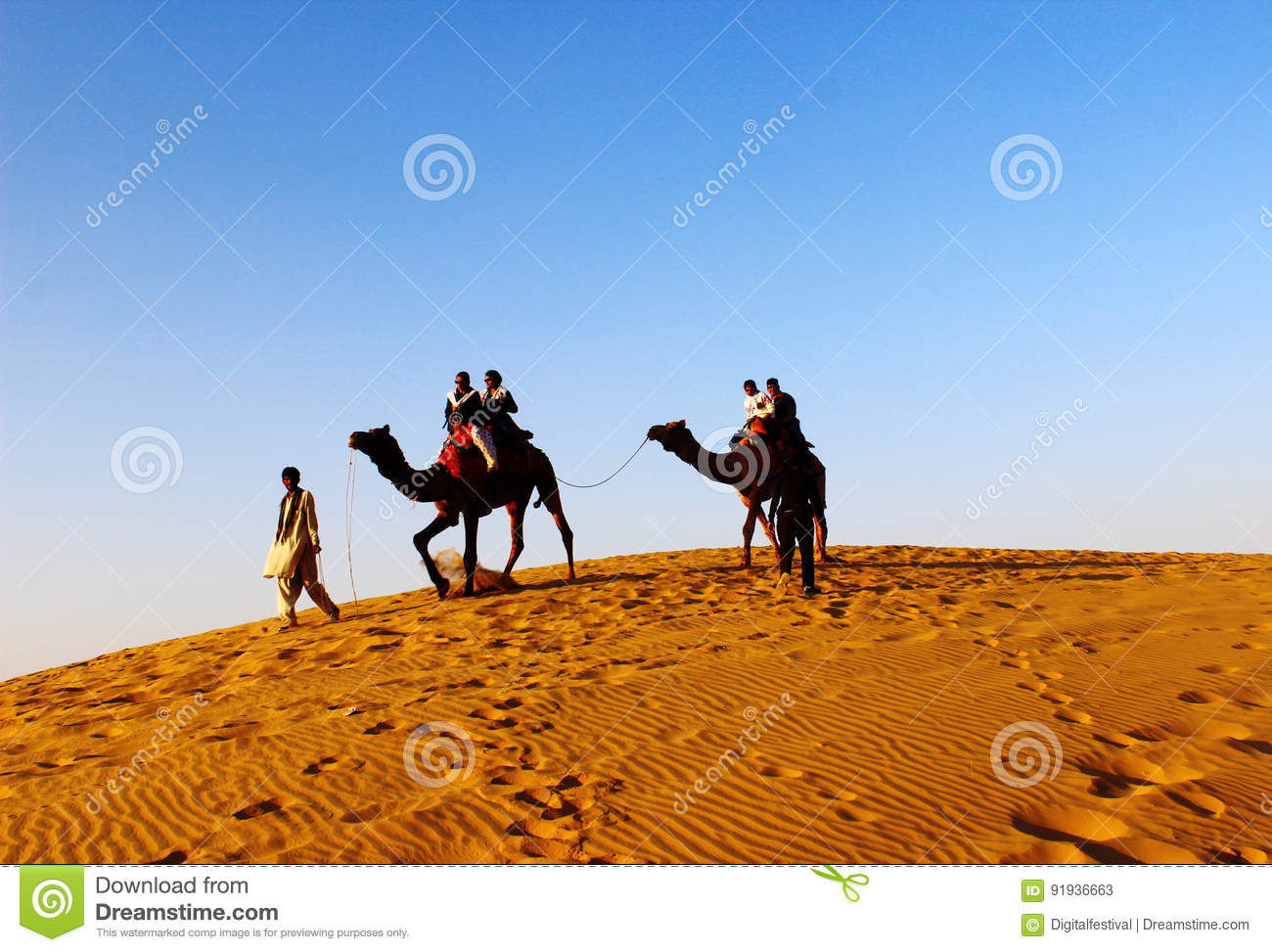 Camel safari at Jaisalmer thar desert India