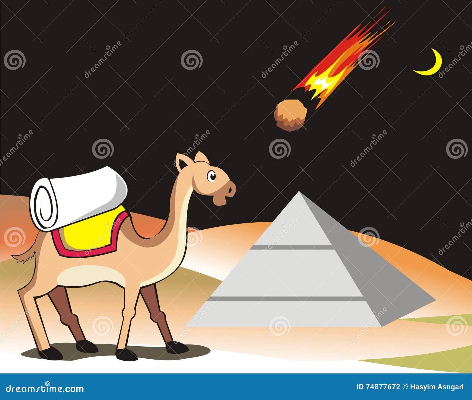 Camelo e meteorito