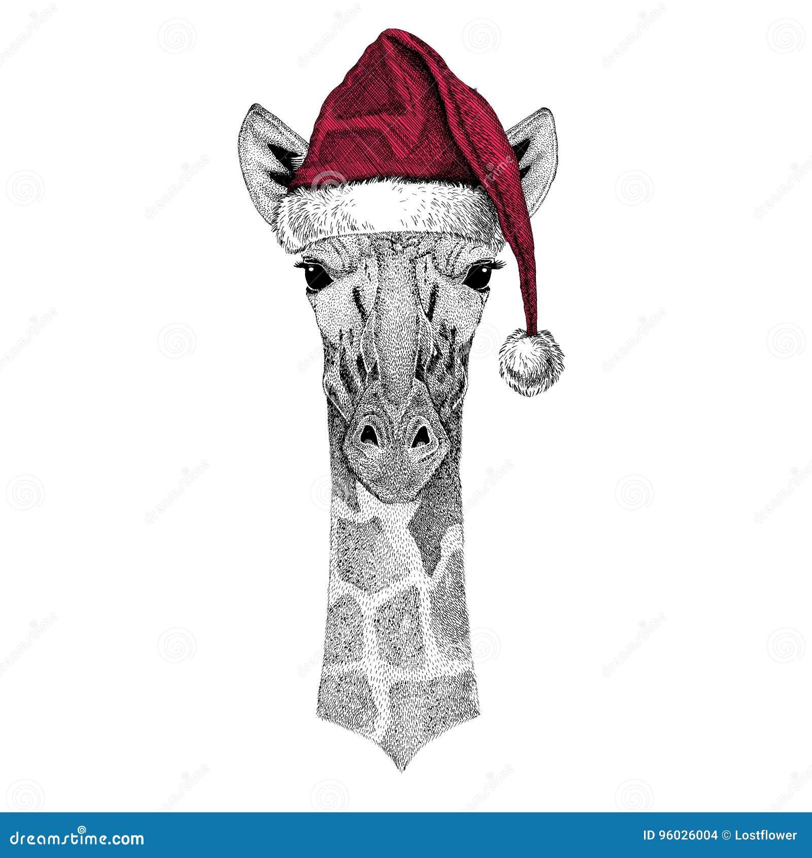 Camelopard, żyrafy Bożenarodzeniowy ilustracyjny dzikie zwierzę jest ubranym bożego narodzenia Santa Claus kapeluszowej Czerwonej